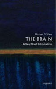 Picture of Brain: A Very Short Introduction