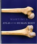 Picture of Martini's Atlas of the Human Body (ME Component)