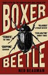 Picture of Boxer, Beetle