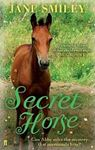 Picture of Secret Horse