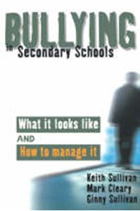 Picture of Bullying in Secondary Schools