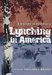 Picture of Lynching in America: A History in Documents