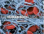 Picture of Human Body Close-up