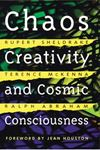 Picture of Chaos, Creativity and Cosmic Consciousness