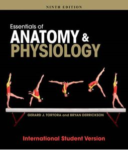 Picture of Essentials of Anatomy and Physiology 9ed
