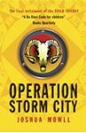 Picture of Operation Storm City