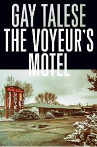 Picture of Voyeur's Motel