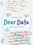 Picture of Dear Data