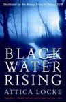 Picture of Black Water Rising