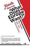 Picture of What Does Europe Want?: The Union and It's Discontents