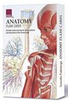 Picture of Anatomy Flash Cards