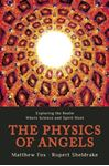 Picture of Physics of Angels: Exploring the Realm Where Science and Spirit Meet