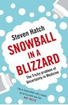 Picture of Snowball in a Blizzard: The Tricky Problem of Uncertainty in Medicine
