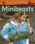 Picture of Minibeasts