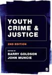 Picture of Youth, Crime and Justice 2ed