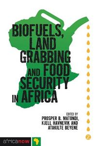 Picture of Biofuels, Land Grabbing and Food Security in Africa