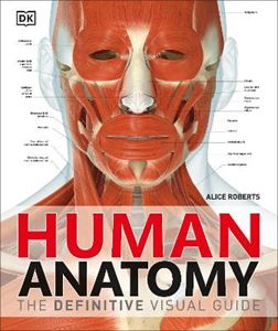 Picture of Human Anatomy: Definitive Visual Guide