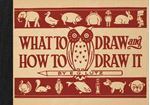 Picture of What to Draw and How to Draw it