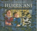 Picture of Hurricane