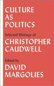 Picture of Culture as Politics: Selected Writings