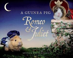 Picture of Guinea Pig Romeo & Juliet