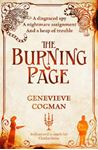 Picture of Burning Page