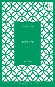 Picture of Key Ideas in Tort Law