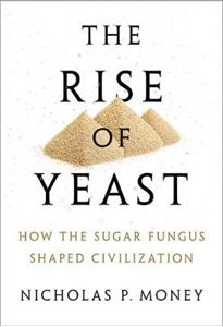 Picture of Rise of Yeast: How the sugar fungus shaped civilisation