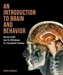 Picture of Introduction To Brain And Behaviour 6ed