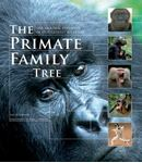 Picture of Primate Family Tree: The Amazing Diversity of Our Closest Relatives