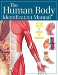 Picture of Human Body Identification Manual