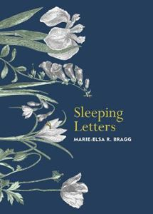 Picture of Sleeping Letters