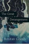 Picture of Great Derangement: Climate Change and the Unthinkable