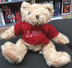 Picture of CCCU 'Bear with No Name' Large Bear with Embroidered Sweater
