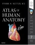 Picture of Atlas of Human Anatomy