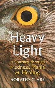 Picture of Heavy Light: A Journey Through Madness, Mania and Healing