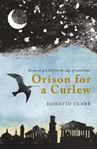 Picture of Orison for a Curlew: In Search of a Bird on the Edge of Extinction